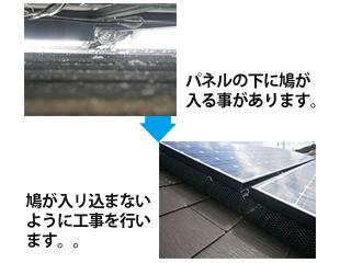 グッドハートの太陽光パネルハト対策